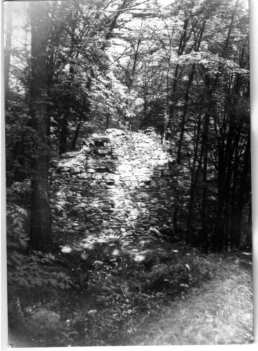 1979 Chřenovice 001