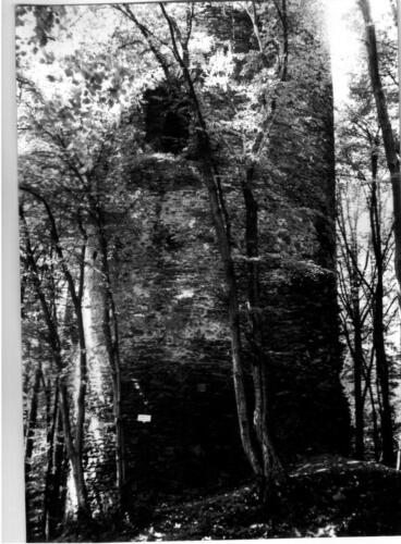 1979 Chřenovice 002