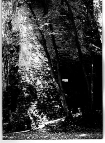 1979 Chřenovice 004