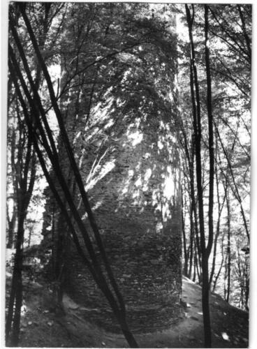 1984 Chřenovice 001