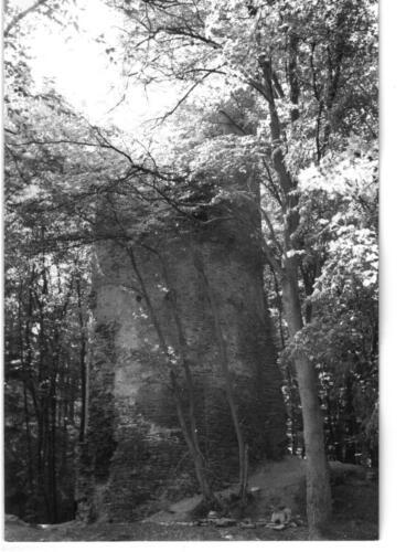 1984 Chřenovice 002